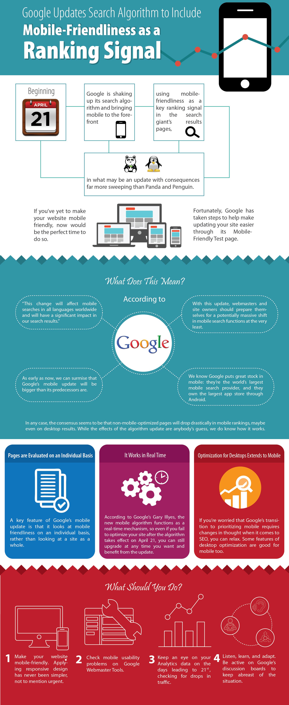Google Update Infographic