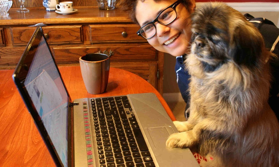 Dog learning to computer