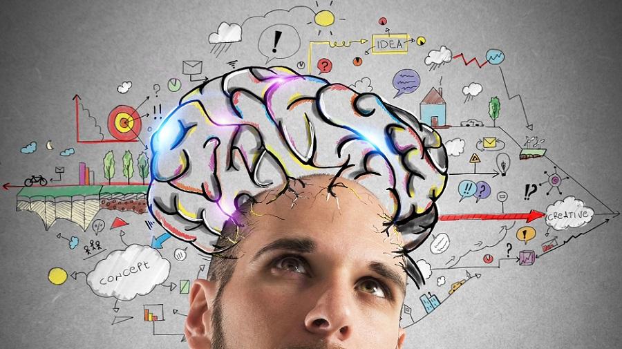 Formulate ideas