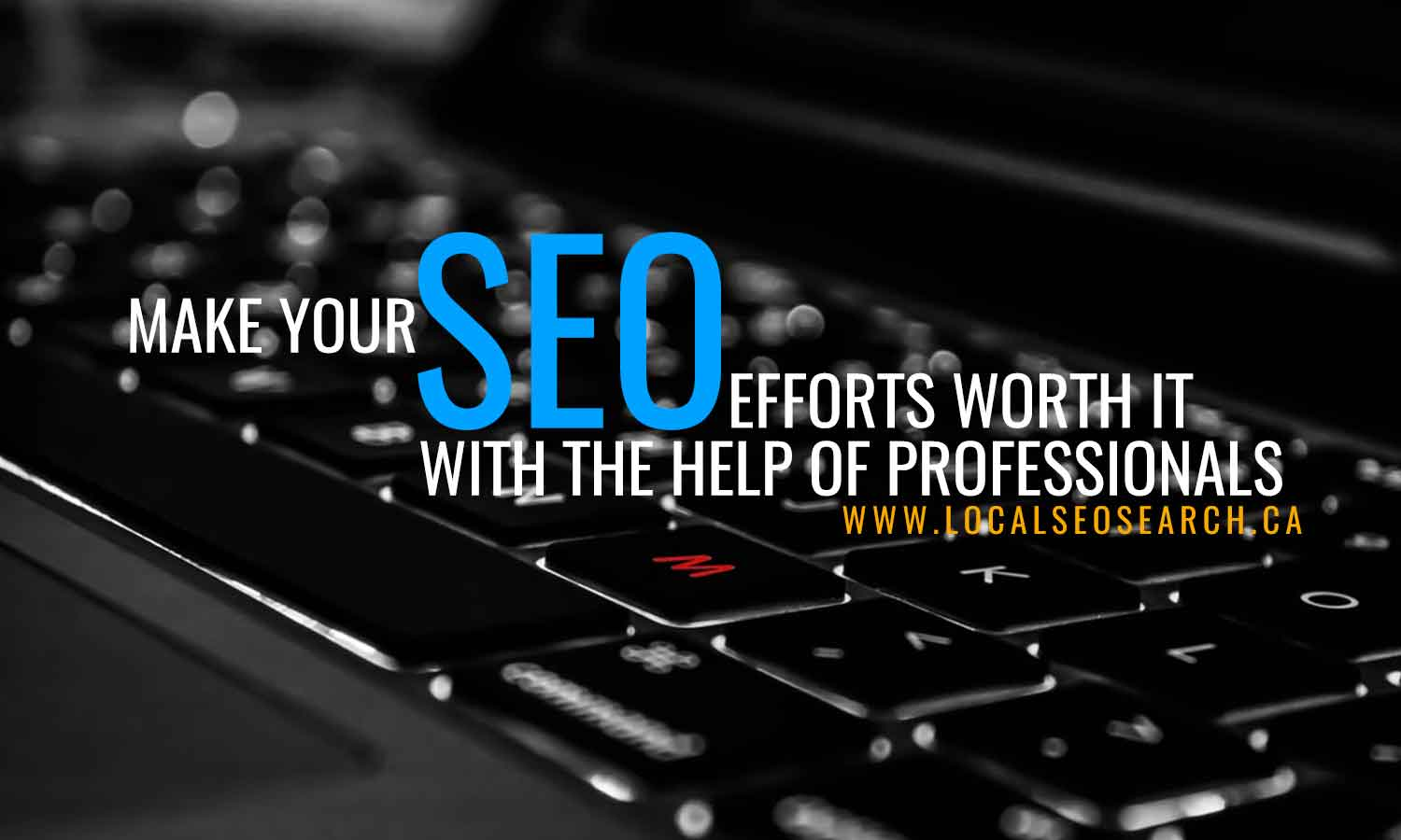 Make SEO efforts worth with professionals