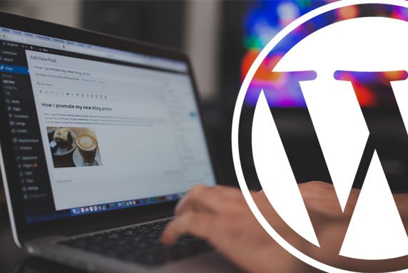 custom wordpress design