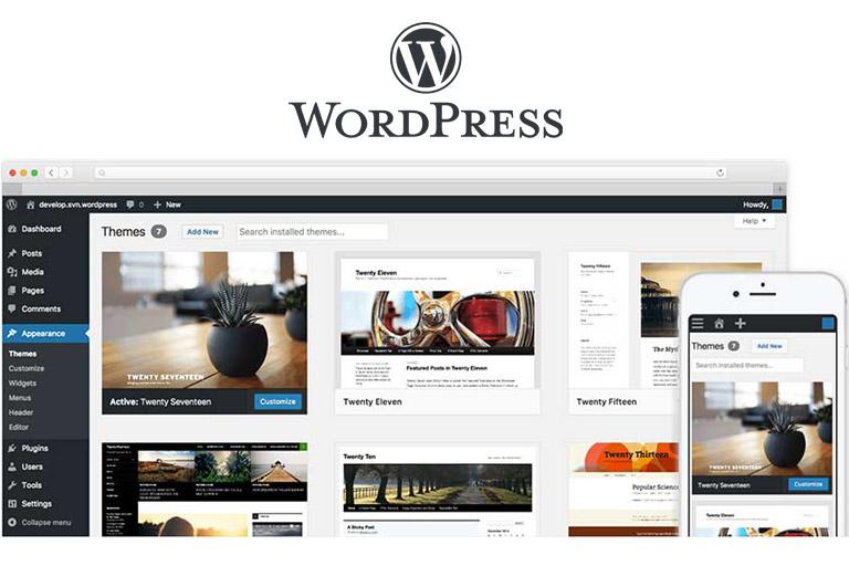 wordpress website services