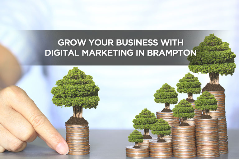 Grow Your Business With Digital Marketing in Brampton