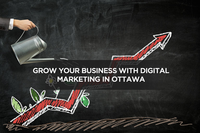 Grow Your Business With Digital Marketing in Ottawa