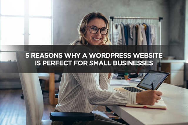 5 Reasons Why a WordPress Website is Perfect For Small Businesses